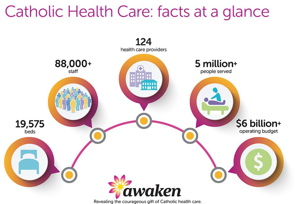 Awaken Facts At A Glance Diagram